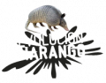 LOGO_revolucion_charango